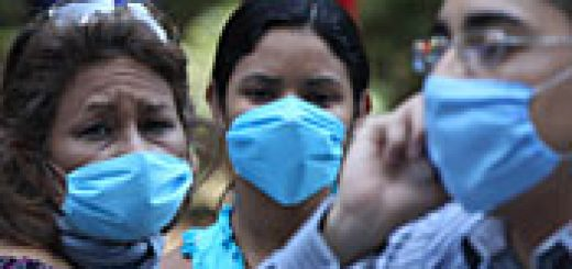 virus grip porcina
